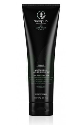Haarpflege_PAUL-MITCHELL_awapuhi_wild-ginger_REPAIR_moisturizing-lather-shampoo_Haarshampoo_250ml